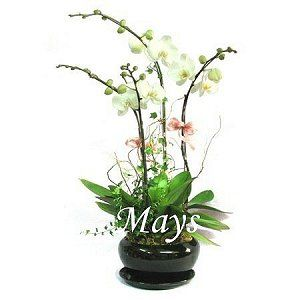 Mother's Day Flower and Gift | HK Delivery mothers-day-flower-2050