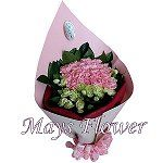 mothers-day-flower-2001