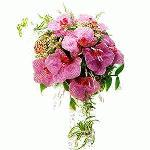 Wedding Bouquet wedd0500