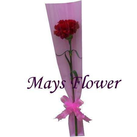 Mother's Day Flower - mothersday-flower-981