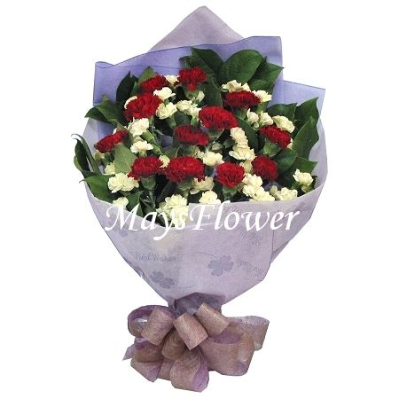Carnation Bouquet - carnation-0309